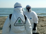 I volontari sulla spiaggia di Barricata (foto: Nicola Cappello)