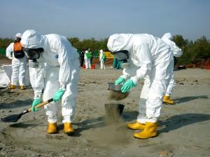 In azione per ripulire la spiaggia